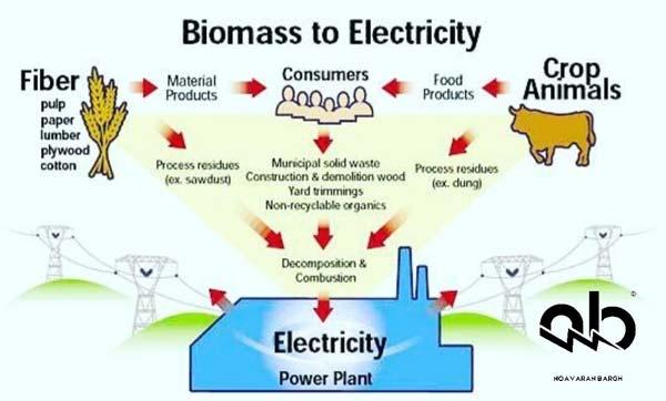 مقدمه و تاریخچه بیوماس-biomass